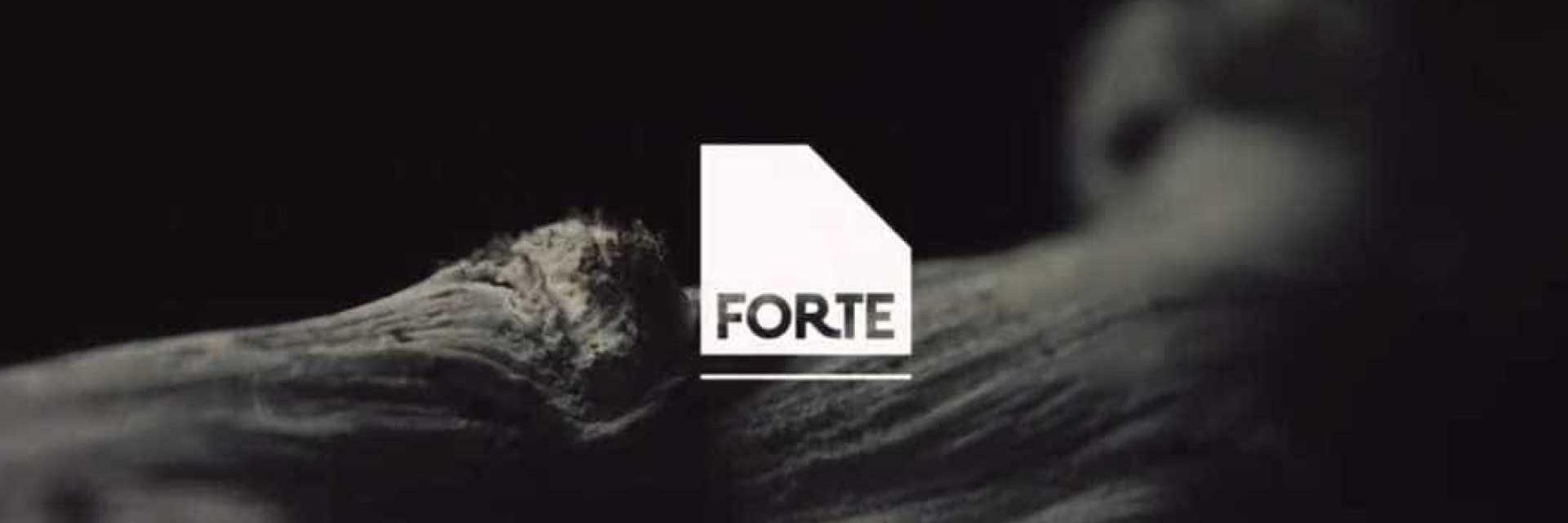 Festival Forte, Portugal - Aug 28-Sep 2 2018